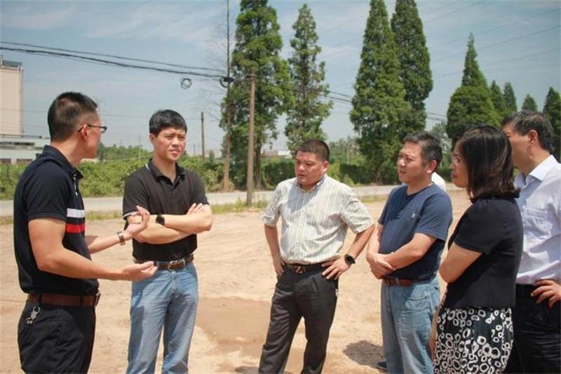 """推进义东高速东阳段建设 省交通厅一行来东开展""""三服务"""""""